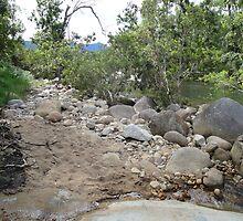 The Creek at Murray Falls by STHogan