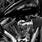 Harley Davidson in mono by Suzanne Newbury
