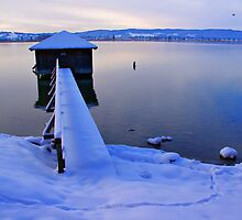 winter scene at the lake by Daidalos