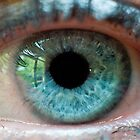 The eye of the beautiful beholder by Mik Efford