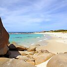 Bettys Beach by georgieboy98