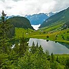 Golzern summer 2007 by Michael Brewer