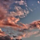 Pink Sky by Wendy  Rauw