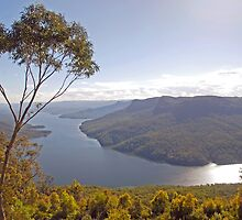 Burragorang Valley View by George Petrovsky