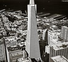 The Transamerica Pyramid by Erik Brede