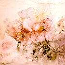 Ice Flowers.... by ©Janis Zroback