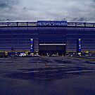 Home of the New York Giants by michael6076