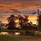 Summer Sunset, Leeton, NSW, Australia by Adrian Paul
