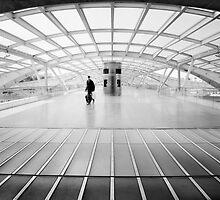 Urban Traveller by Nina Papiorek