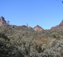 A closer look at our goal, 'The High Tops, Warrumbungle N.P. N.S.W. by Rita Blom