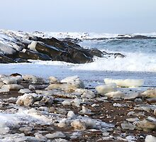 Ice & Breakers at Hudson Bay by Carole-Anne