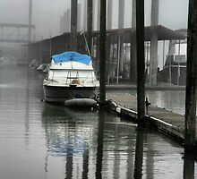 Docked in fog by Barbara  Brown
