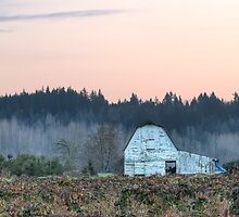 Berry Farm as Dusk Nears by Dale Lockwood