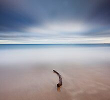 The Stick by Pascal Lee