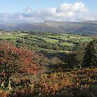 Black Mountains from Llangattock - autumn by Jane Corey