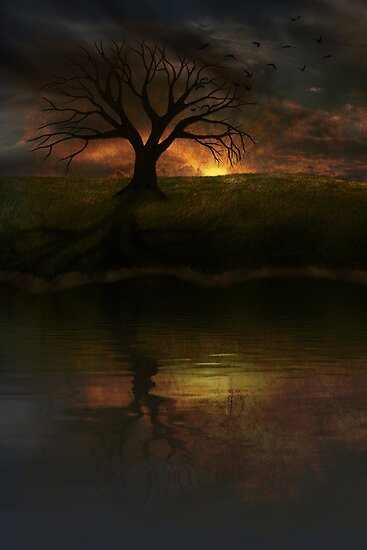 Silent Tree III by Megan Noble