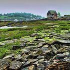 Bailey Island Buoy Shack by Carolyn  Fletcher