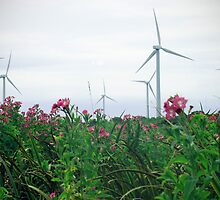 Turbines and Flowers by oonat