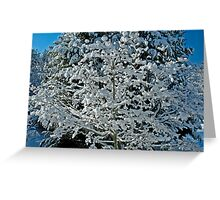 The Marshmallow Tree Greeting Card