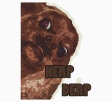 HERP DERP - With Glow by podlove