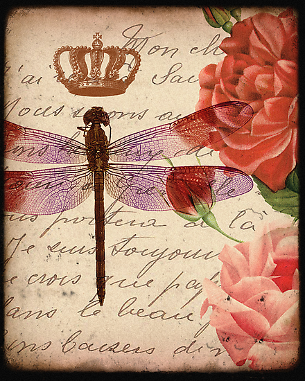 Dragonfly 1 by CalicoCollage