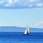 Sail Away... by Trudi Skinn
