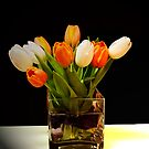 Spring Feeling by hanne