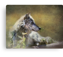 Find Your Own Sunbeam Canvas Print