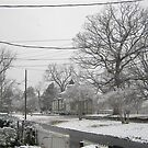 Feb. 19 2012 Snowstorm 3 by dge357