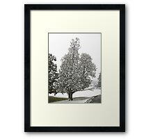 Feb. 19 2012 Snowstorm 27 Framed Print