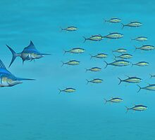 Blue Marlin and Yellowfin Tuna by Walter Colvin