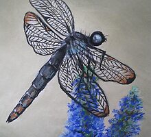 Dainty Dragonfly by Sally Ford