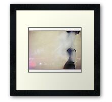 mystery - the spice of life Framed Print