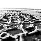 Tracks by corrinalisa
