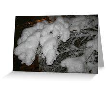 Feb. 19 2012 Snowstorm 38 Greeting Card