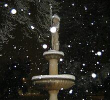 Feb. 19 2012 Snowstorm 53 by dge357