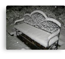 Feb. 19 2012 Snowstorm 57 Canvas Print