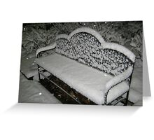 Feb. 19 2012 Snowstorm 57 Greeting Card