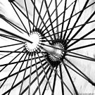 Spokes by vanyahaheights