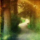 Magical Walk by Carol Bleasdale