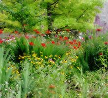 Garden At The Zoo by Carolyn  Fletcher