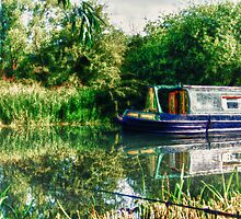 Narrowboat on the River by Vicki Field