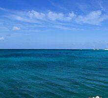 Aruban Coastline by Greg Mrotek