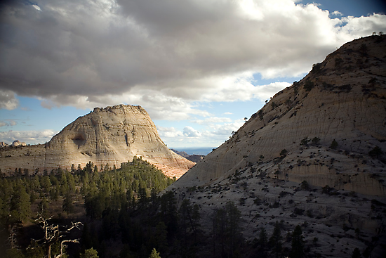 Northgate Peaks - Zion National Park by Bryant Scannell