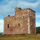 Portencross Castle by Stuart  Fellowes