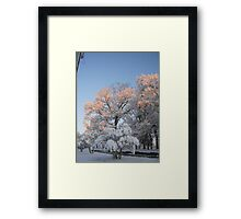 Feb. 19 2012 Snowstorm 99 Framed Print
