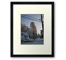 Feb. 19 2012 Snowstorm 102 Framed Print