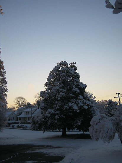 Feb. 19 2012 Snowstorm 103 by dge357