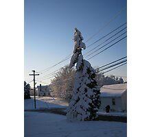 Feb. 19 2012 Snowstorm 112 Photographic Print
