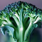Broccoli by RaphArt